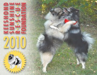 2010coverS